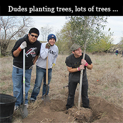 dudes-planting-trees